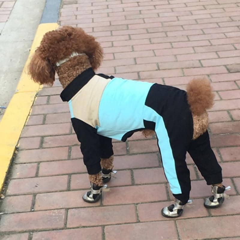 Athleisure Onesie for dogs, dog clothes, dogs clothes, dog clothing, small dog clothes, dogs clothing, dog clothes female, dogs clothes boy, Dogs Clothes For Small To Medium Dog, Loyal, BowWow Shop - Top Dog Outfits Store