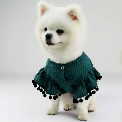 Boho Flair Shirt for dogs, dog clothes, dogs clothes, dog clothing, small dog clothes, dogs clothing, dog clothes female, dogs clothes boy, Dogs Clothes For Small To Medium Dog, Best For Pet, BowWow Shop - Top Dog Outfits Store