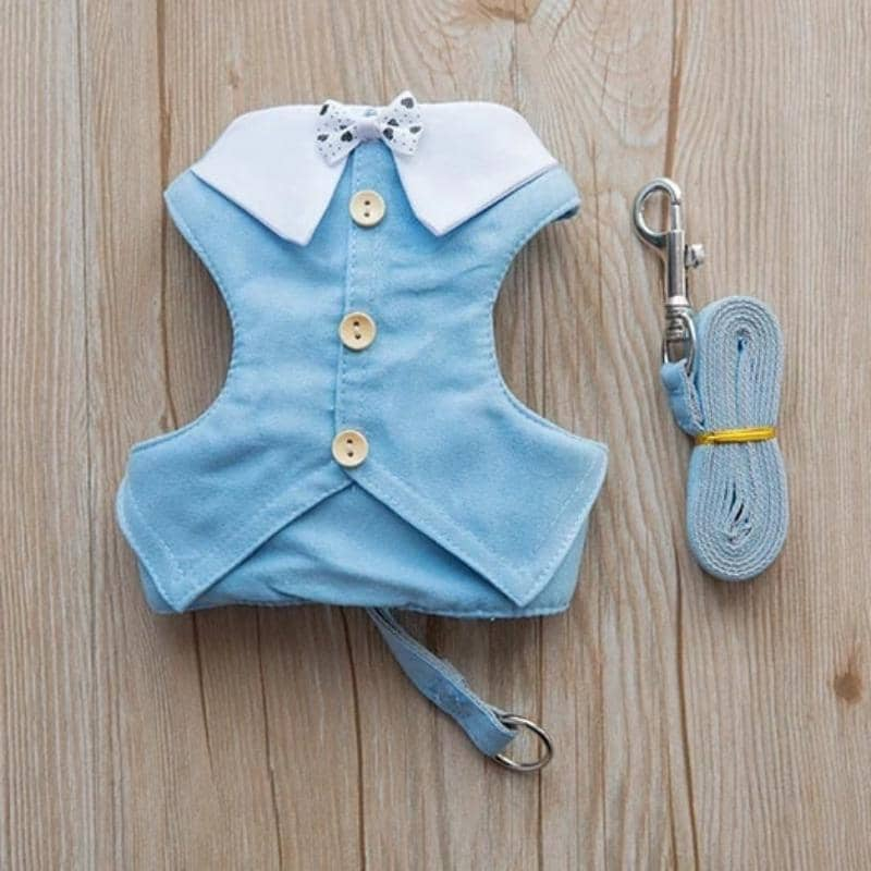 Dog Bow-Dude Harness & Leash | Small to Medium Dog Fashion Clothing | BowWow shop Online