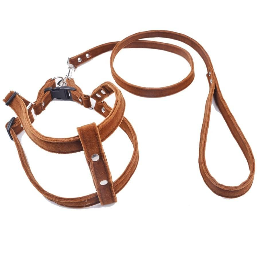 Dog Brown Velvet Harness Set | Small to Medium Dog Fashion Clothing | BowWow shop Online