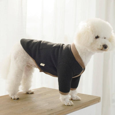 Cardigan Sweater for dogs, dog clothes, dogs clothes, dog clothing, small dog clothes, dogs clothing, dog clothes female, dogs clothes boy, Dogs Clothes For Small To Medium Dog, Loyal, BowWow Shop - Top Dog Outfits Store