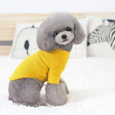 Classic Stub-neck T-shirt for dogs, dog clothes, dogs clothes, dog clothing, small dog clothes, dogs clothing, dog clothes female, dogs clothes boy, Dogs Clothes For Small To Medium Dog, PetMundo, BowWow Shop - Top Dog Outfits Store