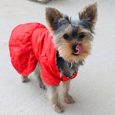 Cruella Reversible Coat for dogs, dog clothes, dogs clothes, dog clothing, small dog clothes, dogs clothing, dog clothes female, dogs clothes boy, Dogs Clothes For Small To Medium Dog, Love Life, BowWow Shop - Top Dog Outfits Store