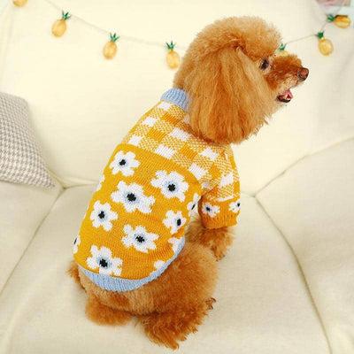 Daisy Love Sweater for dogs, dog clothes, small dog clothes, dogs clothing, dog clothes female, dogs clothes boy, Dogs Clothes For Small To Medium Dog, Wang, BowWow Shop - Top Dog Clothing Store
