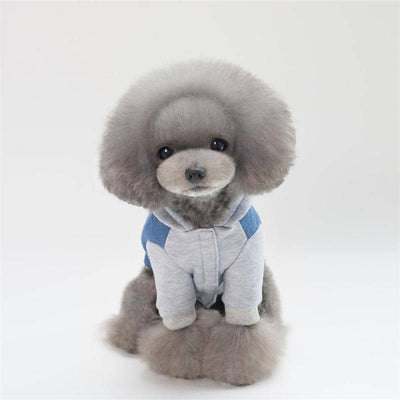 Dog Denim Babe Hoodie | Small to Medium Dog Fashion Clothing | BowWow shop Online