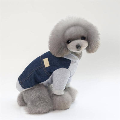 Dog Denim Dude Hoodie | Small to Medium Dog Fashion Clothing | BowWow shop Online