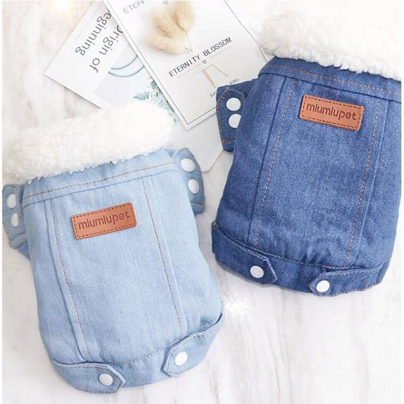 Denim Jacket with Fur Collar for dogs, dog clothes, dogs clothes, dog clothing, small dog clothes, dogs clothing, dog clothes female, dogs clothes boy, Dogs Clothes For Small To Medium Dog, Idepet Home, BowWow Shop - Top Dog Outfits Store