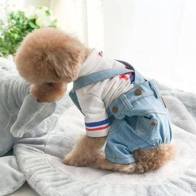 Denim Overalls for dogs, dog clothes, dogs clothes, dog clothing, small dog clothes, dogs clothing, dog clothes female, dogs clothes boy, Dogs Clothes For Small To Medium Dog, PetMundo, BowWow Shop - Top Dog Outfits Store