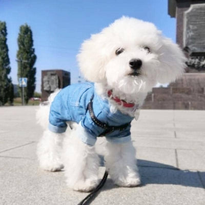 Denim Shirt Jumpsuit for dogs, dog clothes, dogs clothes, dog clothing, small dog clothes, dogs clothing, dog clothes female, dogs clothes boy, Dogs Clothes For Small To Medium Dog, Hoopet, BowWow Shop - Top Dog Outfits Store