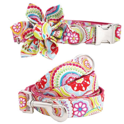 Flower Power Retro Collar Set for dogs, dog clothes, dogs clothes, dog clothing, small dog clothes, dogs clothing, dog clothes female, dogs clothes boy, Dogs Clothes For Small To Medium Dog, Free Sunday, BowWow Shop - Top Dog Outfits Store