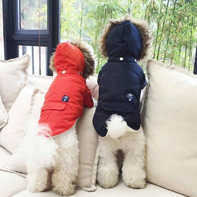 Fur Parka Jacket for dogs, dog clothes, dogs clothes, dog clothing, small dog clothes, dogs clothing, dog clothes female, dogs clothes boy, Dogs Clothes For Small To Medium Dog, PetMundo, BowWow Shop - Top Dog Outfits Store