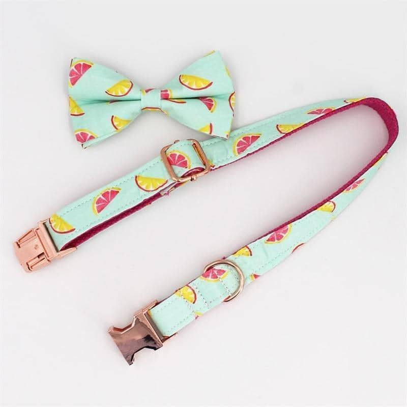 Grapefruit Bow-Tie Collar & Leash Set for dogs, dog clothes, dogs clothes, dog clothing, small dog clothes, dogs clothing, dog clothes female, dogs clothes boy, Dogs Clothes For Small To Medium Dog, Free Sunday, BowWow Shop - Top Dog Outfits Store