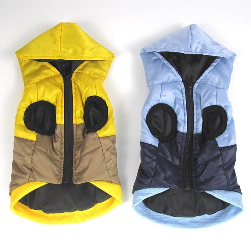 Hooded Harness Jacket for dogs, dog clothes, dogs clothes, dog clothing, small dog clothes, dogs clothing, dog clothes female, dogs clothes boy, Dogs Clothes For Small To Medium Dog, CDDM, BowWow Shop - Top Dog Outfits Store