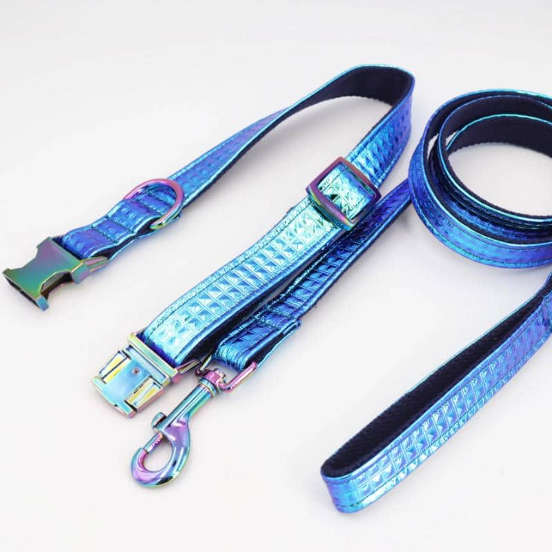 Iridescent Collar & Leash for dogs, dog clothes, dogs clothes, dog clothing, small dog clothes, dogs clothing, dog clothes female, dogs clothes boy, Dogs Clothes For Small To Medium Dog, Free Sunday, BowWow Shop - Top Dog Outfits Store