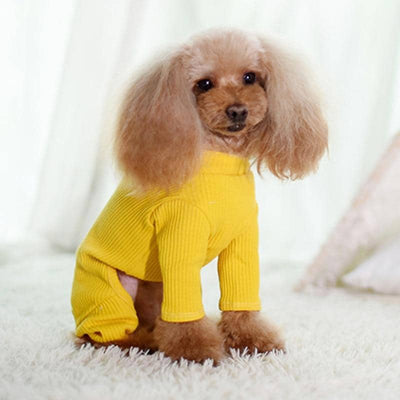 Knit Basics Onesie for dogs, dog clothes, dogs clothes, dog clothing, small dog clothes, dogs clothing, dog clothes female, dogs clothes boy, Dogs Clothes For Small To Medium Dog, C-King, BowWow Shop - Top Dog Outfits Store
