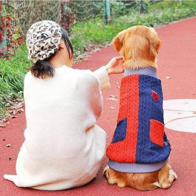 Maxi Professor Cardigan for dogs, dog clothes, dogs clothes, dog clothing, small dog clothes, dogs clothing, dog clothes female, dogs clothes boy, Dogs Clothes For Small To Medium Dog, Hoopet, BowWow Shop - Top Dog Outfits Store