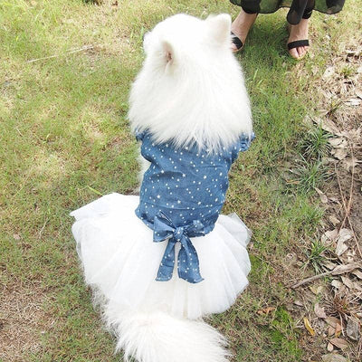 Maxi Star Tutu for dogs, dog clothes, dogs clothes, dog clothing, small dog clothes, dogs clothing, dog clothes female, dogs clothes boy, Dogs Clothes For Small To Medium Dog, Adorable, BowWow Shop - Top Dog Outfits Store