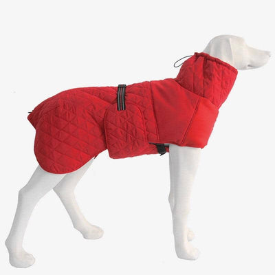Maxi Turtleneck Jacket for dogs, dog clothes, dogs clothes, dog clothing, small dog clothes, dogs clothing, dog clothes female, dogs clothes boy, Dogs Clothes For Small To Medium Dog, Petravel, BowWow Shop - Top Dog Outfits Store