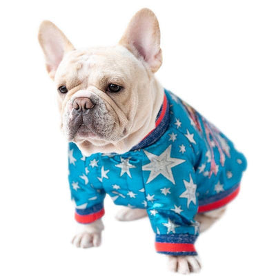 Midi UFO Disco Jacket for dogs, dog clothes, dogs clothes, dog clothing, small dog clothes, dogs clothing, dog clothes female, dogs clothes boy, Dogs Clothes For Small To Medium Dog, Golly, BowWow Shop - Top Dog Outfits Store