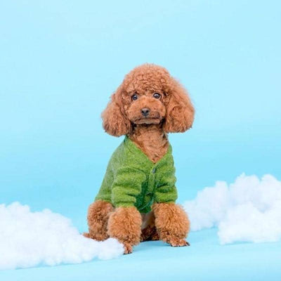 Moss Knit Cardigan for dogs, dog clothes, small dog clothes, dogs clothing, dog clothes female, dogs clothes boy, Dogs Clothes For Small To Medium Dog, Hoopet, BowWow Shop - Top Dog Clothing Store