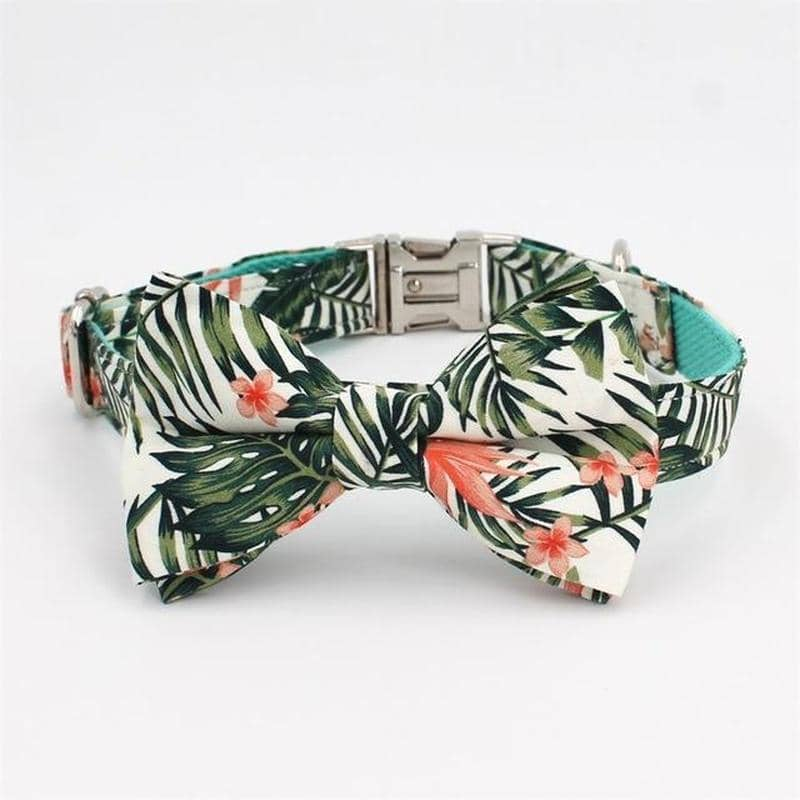 Dog Paradise Bow-Tie Collar & Leash Set | Small to Medium Dog Fashion Clothing | BowWow shop Online