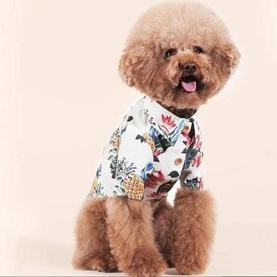 Paradise Print Hawaiian Shirt for dogs, dog clothes, dogs clothes, dog clothing, small dog clothes, dogs clothing, dog clothes female, dogs clothes boy, Dogs Clothes For Small To Medium Dog, Star Pets, BowWow Shop - Top Dog Outfits Store