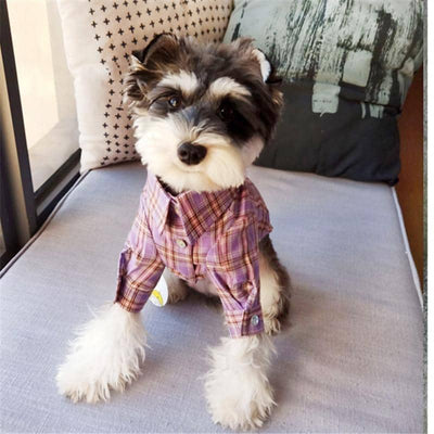 Pastel Plaid Shirt for dogs, dog clothes, small dog clothes, dogs clothing, dog clothes female, dogs clothes boy, Dogs Clothes For Small To Medium Dog, BigEye, BowWow Shop - Top Dog Clothing Store