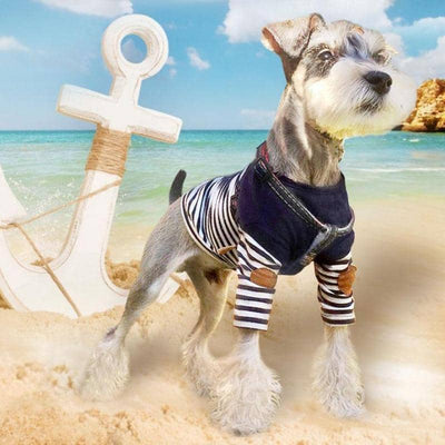 Patch & Stripe Shirt for dogs, dog clothes, dogs clothes, dog clothing, small dog clothes, dogs clothing, dog clothes female, dogs clothes boy, Dogs Clothes For Small To Medium Dog, Hoopet, BowWow Shop - Top Dog Outfits Store