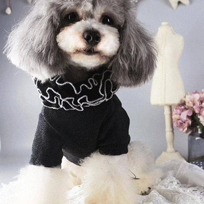 Dog Pearl Shakespeare Sweater | Small to Medium Dog Fashion Clothing | BowWow shop Online