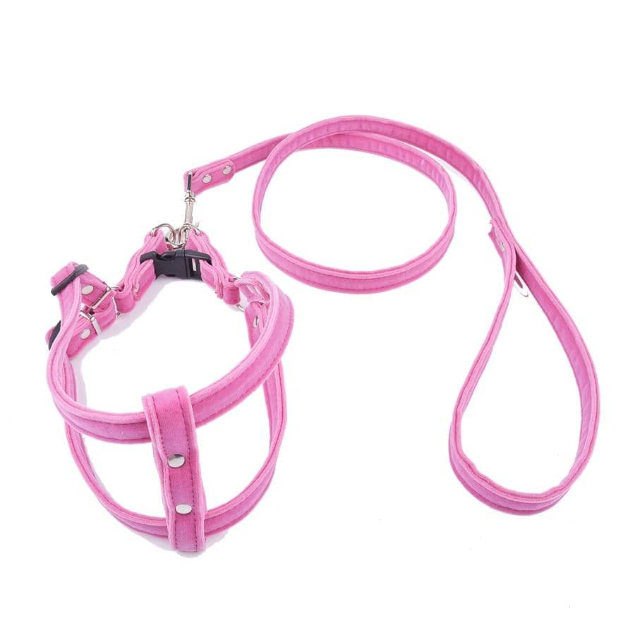 Dog Pink Velvet Harness Set | Small to Medium Dog Fashion Clothing | BowWow shop Online