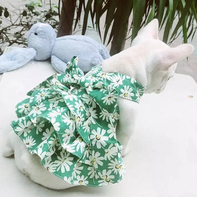 Print Halterneck Dress for dogs, dog clothes, small dog clothes, dogs clothing, dog clothes female, dogs clothes boy, Dogs Clothes For Small To Medium Dog, C-King, BowWow Shop - Top Dog Clothing Store