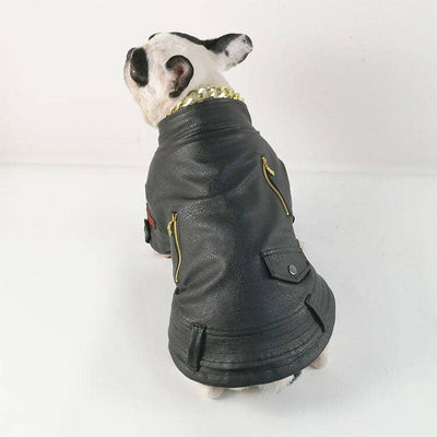 PU Pilot Jacket for dogs, dog clothes, dogs clothes, dog clothing, small dog clothes, dogs clothing, dog clothes female, dogs clothes boy, Dogs Clothes For Small To Medium Dog, PeTalk, BowWow Shop - Top Dog Outfits Store