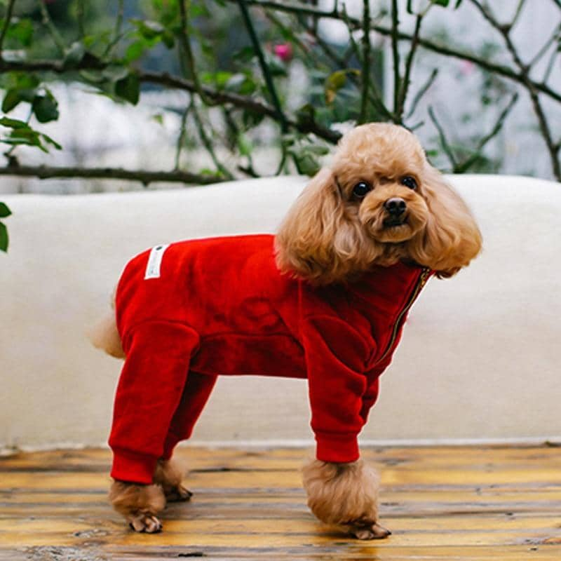 Royal Fleece Onesie for dogs, dog clothes, small dog clothes, dogs clothing, dog clothes female, dogs clothes boy, Dogs Clothes For Small To Medium Dog, C-King, BowWow Shop - Top Dog Clothing Store