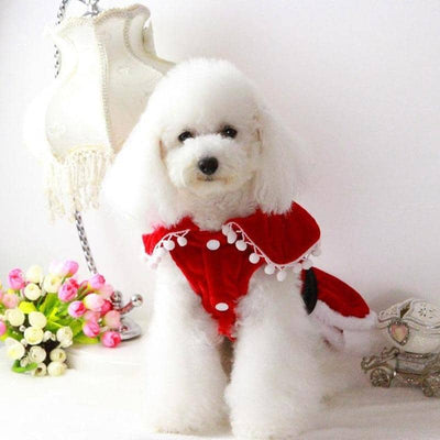 Santas Helper Dress for dogs, dog clothes, dogs clothes, dog clothing, small dog clothes, dogs clothing, dog clothes female, dogs clothes boy, Dogs Clothes For Small To Medium Dog, Fun Of Pets, BowWow Shop - Top Dog Outfits Store