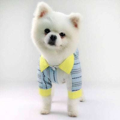 Saturday Style Shirt for dogs, dog clothes, dogs clothes, dog clothing, small dog clothes, dogs clothing, dog clothes female, dogs clothes boy, Dogs Clothes For Small To Medium Dog, PetMundo, BowWow Shop - Top Dog Outfits Store