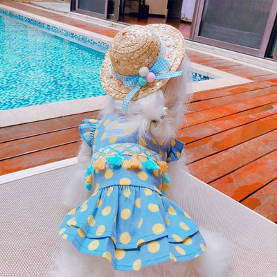 Spotted Shortie Dress for dogs, dog clothes, small dog clothes, dogs clothing, dog clothes female, dogs clothes boy, Dogs Clothes For Small To Medium Dog, PetMundo, BowWow Shop - Top Dog Clothing Store