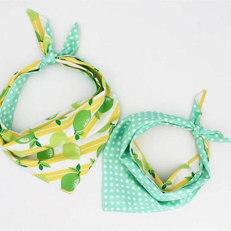 Spring Bandana Set for dogs, dog clothes, dogs clothes, dog clothing, small dog clothes, dogs clothing, dog clothes female, dogs clothes boy, Dogs Clothes For Small To Medium Dog, Free Sunday, BowWow Shop - Top Dog Outfits Store