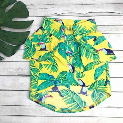 Toucan Print Shirt for dogs, dog clothes, dogs clothes, dog clothing, small dog clothes, dogs clothing, dog clothes female, dogs clothes boy, Dogs Clothes For Small To Medium Dog, MPK, BowWow Shop - Top Dog Outfits Store