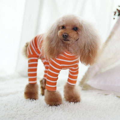 Trend Striped Onesie for dogs, dog clothes, dogs clothes, dog clothing, small dog clothes, dogs clothing, dog clothes female, dogs clothes boy, Dogs Clothes For Small To Medium Dog, C-King, BowWow Shop - Top Dog Outfits Store