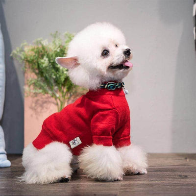 Turtleneck Preppy Sweater for dogs, dog clothes, small dog clothes, dogs clothing, dog clothes female, dogs clothes boy, Dogs Clothes For Small To Medium Dog, Wang, BowWow Shop - Top Dog Clothing Store