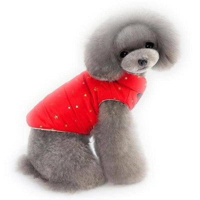 Twinkle Star Vest Jacket for dogs, dog clothes, small dog clothes, dogs clothing, dog clothes female, dogs clothes boy, Dogs Clothes For Small To Medium Dog, ePet, BowWow Shop - Top Dog Clothing Store