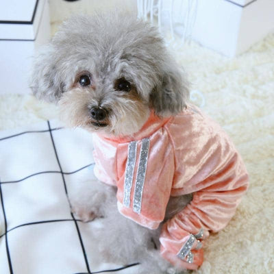 Velvet Jumpsuit for dogs, dog clothes, small dog clothes, dogs clothing, dog clothes female, dogs clothes boy, Dogs Clothes For Small To Medium Dog, Elfie, BowWow Shop - Top Dog Clothing Store