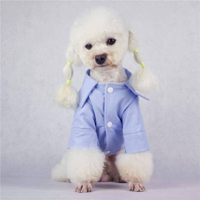 Powder Blue Vogue PU Jacket for dogs, dog clothes, small dog clothes, dogs clothing, dog clothes female, dogs clothes boy, Dogs Clothes For Small To Medium Dog, BigEye, BowWow Shop - Top Dog Clothing Store