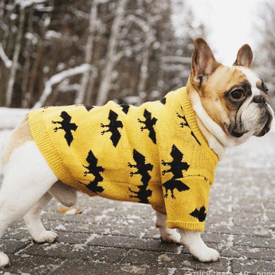 Dog Yellow Bat Sweater | Small to Medium Dog Fashion Clothing | BowWow shop Online