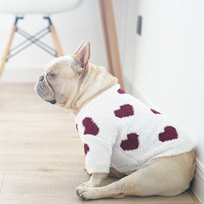 Young Love Sweater for dogs, dog clothes, dogs clothes, dog clothing, small dog clothes, dogs clothing, dog clothes female, dogs clothes boy, Dogs Clothes For Small To Medium Dog, PetMundo, BowWow Shop - Top Dog Outfits Store