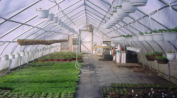 High Tunnel Cold Frame Greenhouse Grizzly Shelter