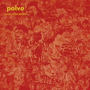 Polvo- Today's Active Lifestyles