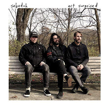 Load image into Gallery viewer, Sebadoh- Act Surprised