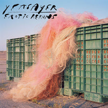 Load image into Gallery viewer, Yeasayer- Erotic Rerun