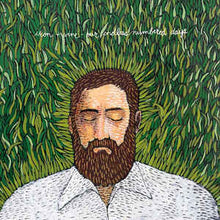 Load image into Gallery viewer, Iron & Wine- Our Endless Numbered Days